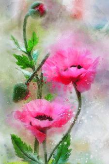 акварельные цветы. цифровая живопись