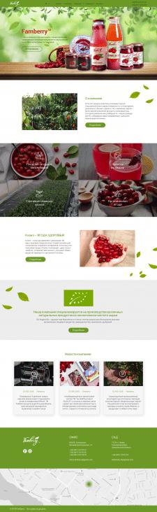 """Дизайн сайта для продукции ТМ """"Famberry"""""""