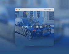 Информационный сайт инвестиционного проекта