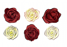 Иллюстрация роз изолировано на белом фоне
