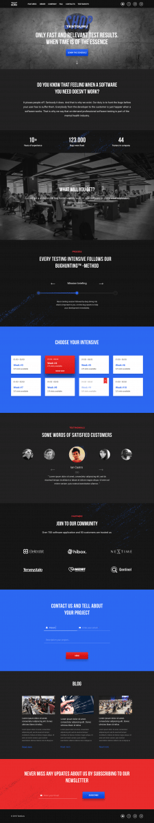 Дизайн сайта компании тестирования ПО