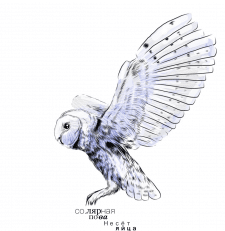 Полярная сова))