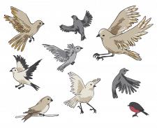 Векторні птахи