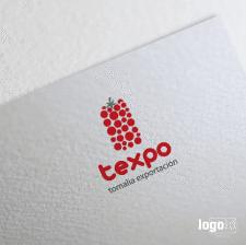 Логотипы | TEXPO