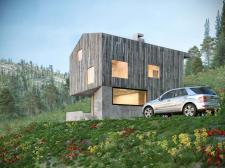 Будинок в Карпатських горах