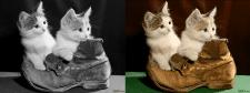 Восстановление цвета фотографии