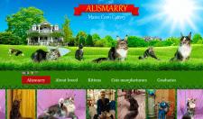 Создание сайта под ключь alismarry.com