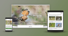 Responsive Web-site Bird Watching Ukraine