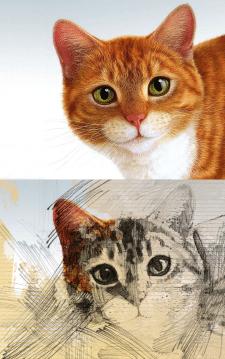 Карандашный рисунок из фото