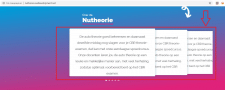 NuTheorie (сайт автошколы в Голландии)