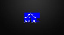 Логотип  IT компании