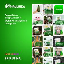 Оформление Instagram для Spirulina