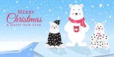 Иллюстрация для polarbearkids.com