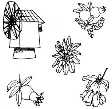 мельница и цветущие плоды граната