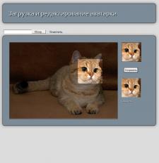 Скрипт загрузки и редактирования размеров аватарки
