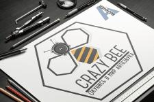 """Логотип """"Crazy Bee"""""""