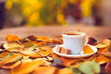 Осеннее волшебство (рассказ, отрывок)