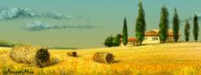 Иллюстрация (Италия)
