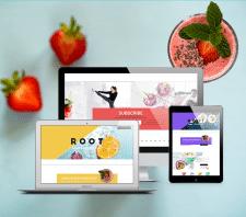 Дизайн сайта компании изготовителя смузи