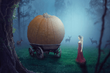 Pumpkin in the forest