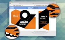 Разработка дизайна группы Vianor