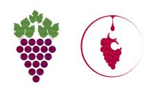 Логотип для виноградной плантации
