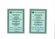 Сертификат веб-мастера, 2001