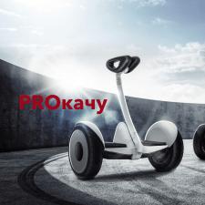 Разработка логотипа и фирменного стиля для Proкачу