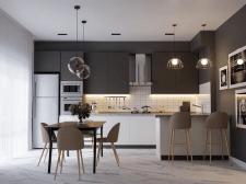 Візуалізація №1 кухня-столова