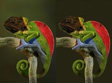 Векторизация изображения в svg и замена фона
