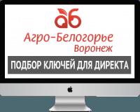 Семантическое ядро для сайта - tdab.ru
