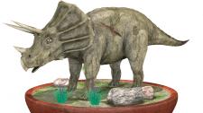 Модель Трицератопса