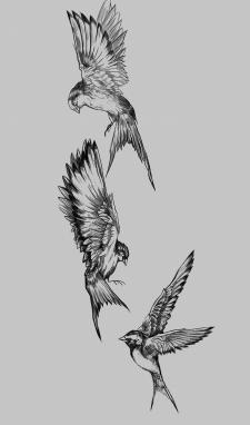 Дизайн эскиза татуировки ( Ласточки)