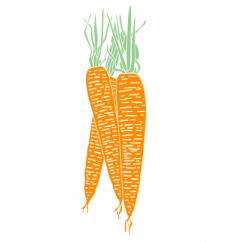 Морковка вектор