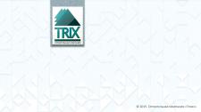 TRIX строительная компания