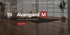 Avangard M