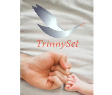 Логотип для компании  TrinnySet