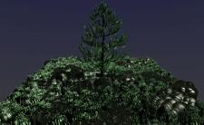 елка и камни