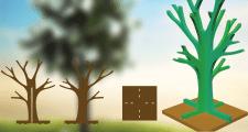 Развертка денежного дерева