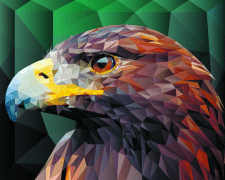 Eagle low poly