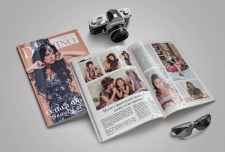Верстка журнала «Domino»