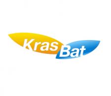 Логотип для компании по продаже акамуляторов \ Россия \ 2008 год