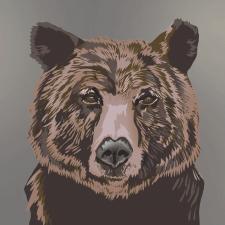Медведь портрет