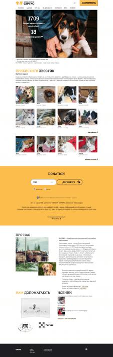 Создание и Дизайн для сайта Sirius