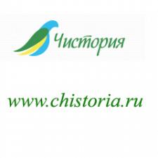 Название и домен клининговой компании