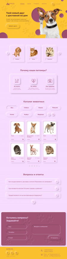 Дизайн сайта  для интернет-зоомагазина