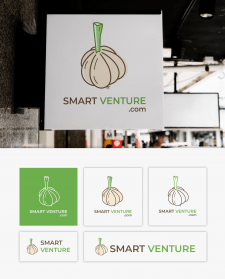 Smart Venture Logo Design