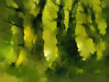 Фоновый лес