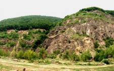 «Неня моя – Чорна гора…» або зелений край Виноград
