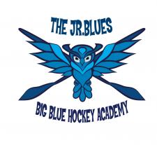 Логотип для хокейной подростковой команды